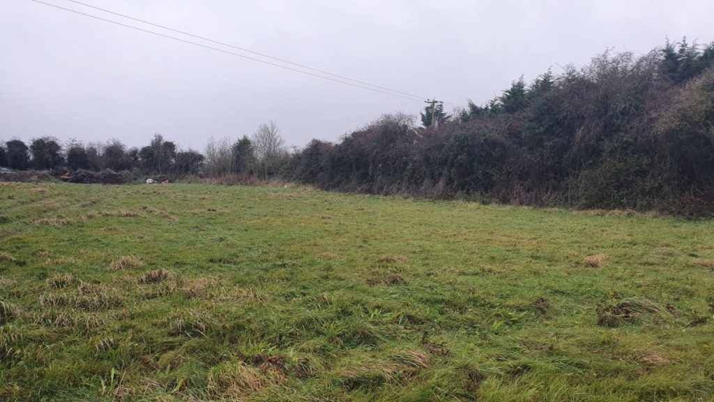 selfbuild site in Treastown County Kildare