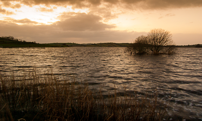 lough ross south armagh