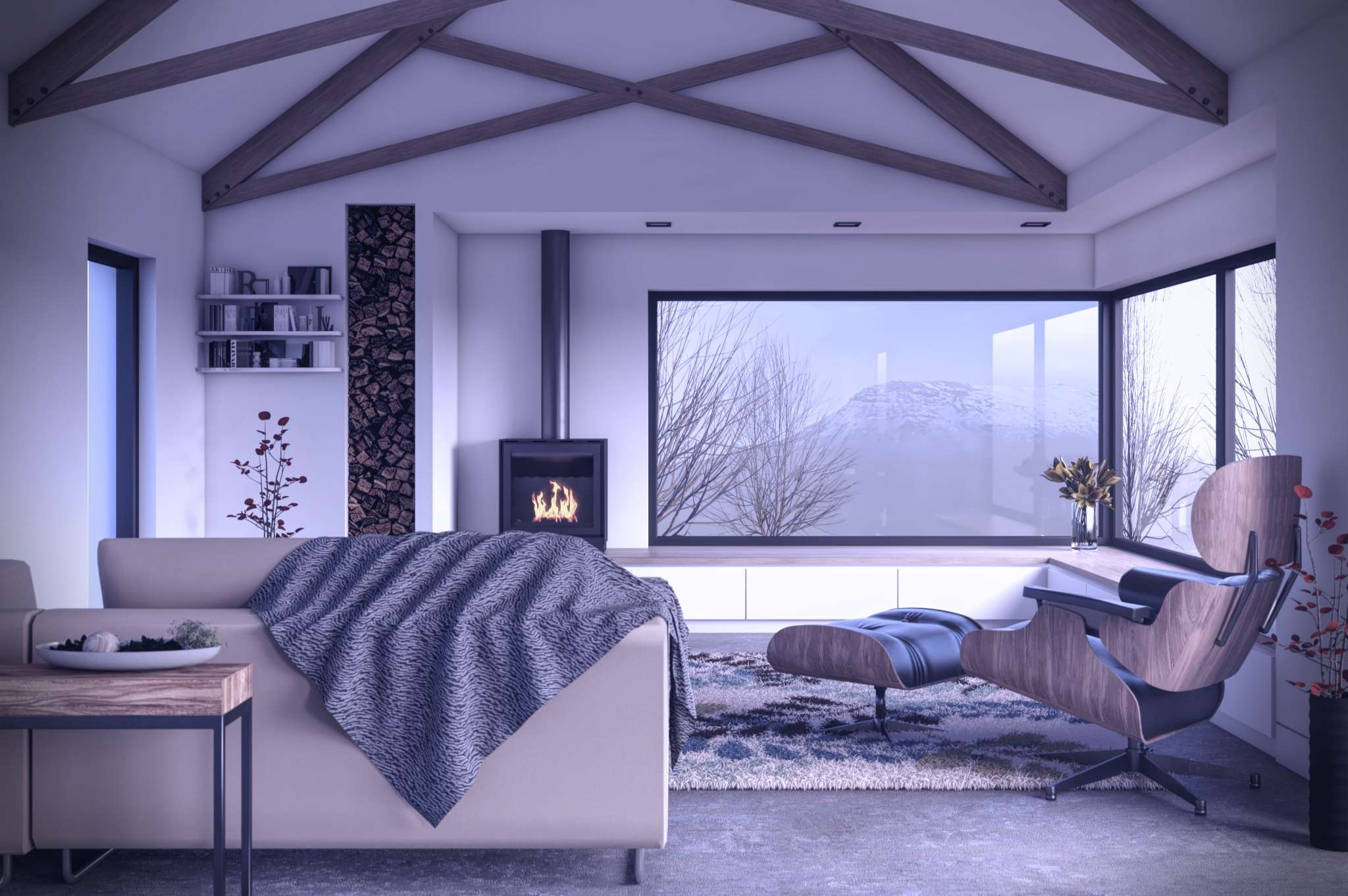 internal images of woodburning stove and wooden trusses